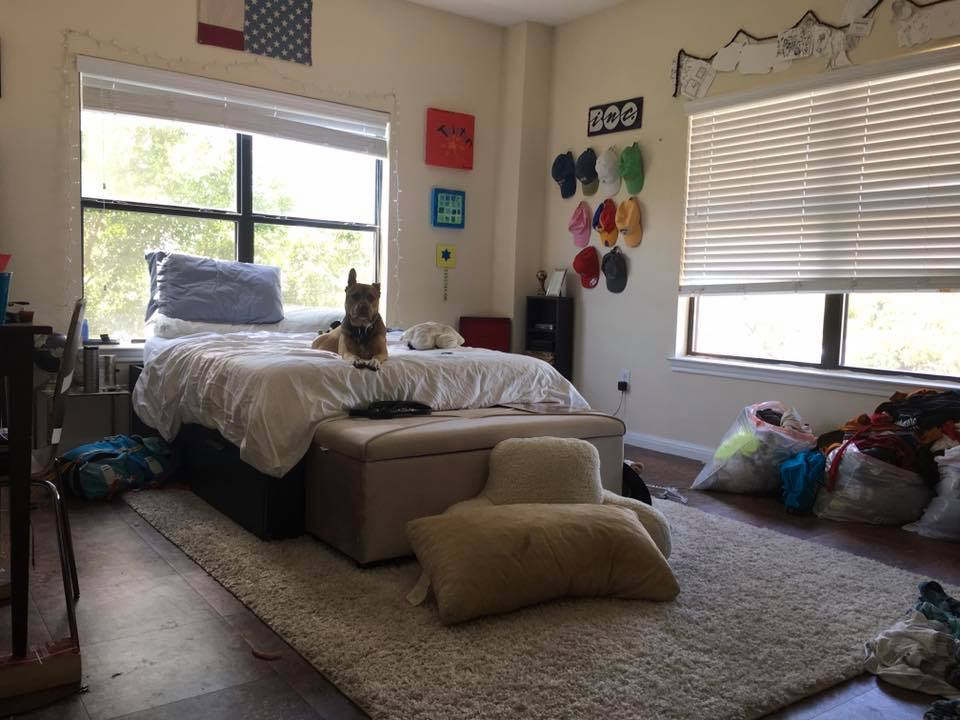 Roommate search- 4/2 SPACIOUS 1800sqft apartment!