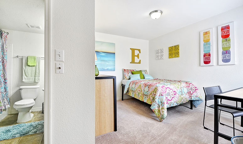 Illinois ONE North Apartment (Available Jan. 17, 2018)!