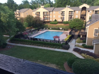 One bedroom apartment (sublease)