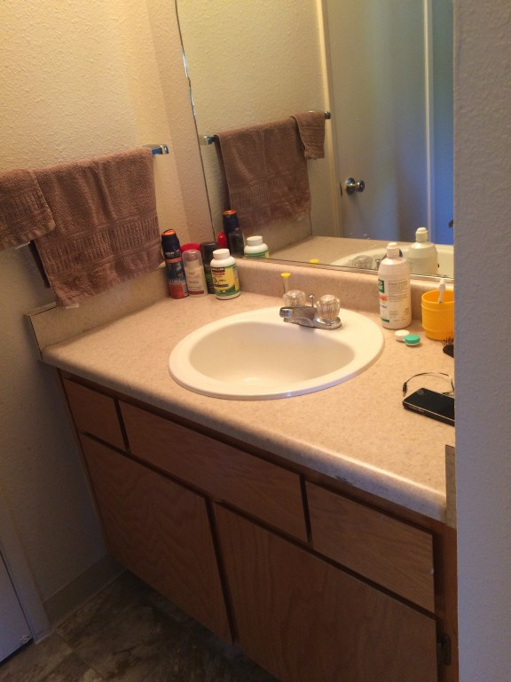 University Court Apartments Spacious Single Room Sublease ( $490 a month )
