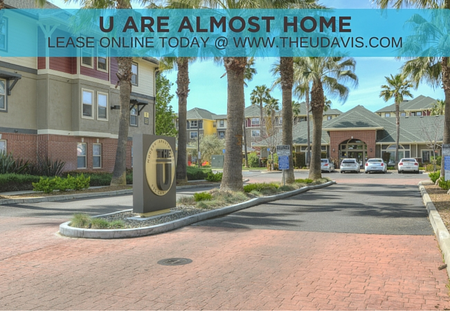The U- Newly Renovated Apartments Starting at $645!